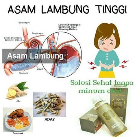 Minyak Kutus Kutus Jakarta Selatan minyak khusus kutus kutus untuk maag yang menjadi solusi anda