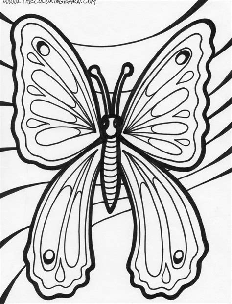butterfly coloring page fairies coloring home