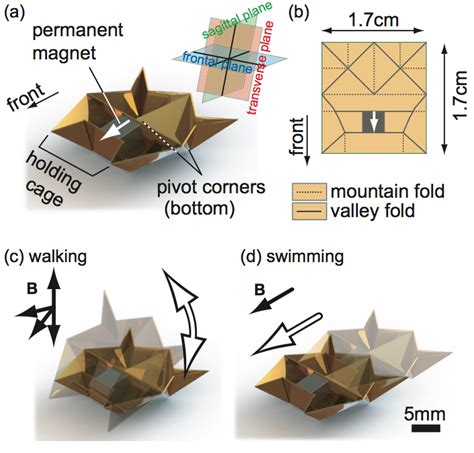 Robot Origami - tiny origami robot runs climbs lifts loads and even