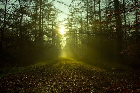 Path Of Light path of light by ma5tt on deviantart