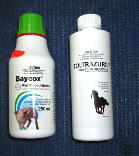 toltrazuril for puppies baycox and toltrazurilboth baycox and toltrazuril kill coccidia and are newer drugs