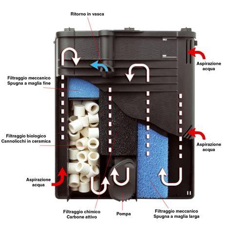 filtro interno acquario come funzionano i filtri per acquario