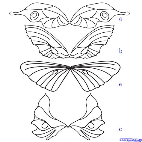 how to draw fairy wings step by step fairies fantasy