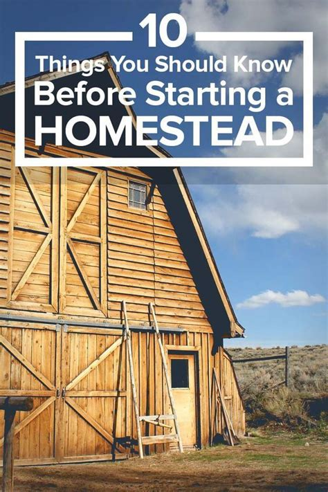 one acre homestead here s what to plant raise and build one acre homestead here s what to plant raise and build homesteads farming and survival