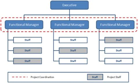 project management diagram types organizational structure types for project managers