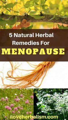 natural remedies for mood swings from menopause 1000 ideas about natural remedies for menopause on