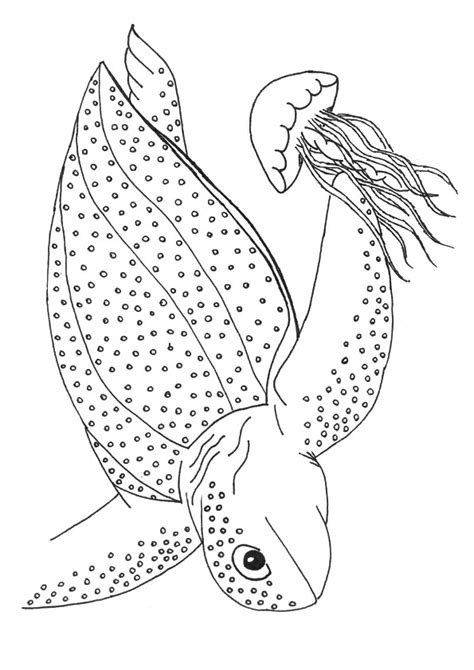 leatherback turtle coloring page leatherback sea turtle coloring pages coloringstar