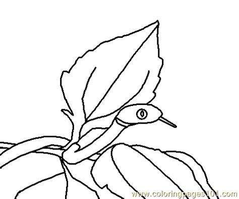 Snake Brown Tree Coloring Page Free Snake Coloring Pages Brown Tree Coloring Pages