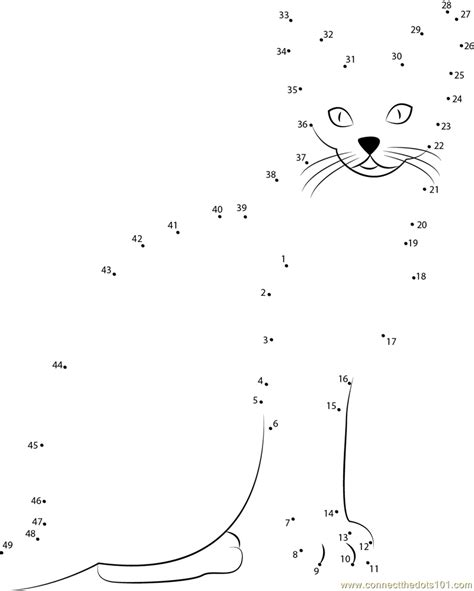 printable dot to dot cat abyssinian cat dot to dot printable worksheet connect
