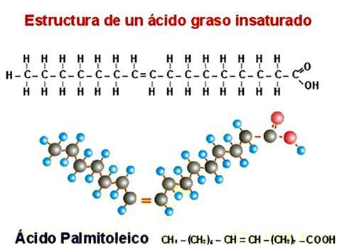 cadenas hidrocarbonadas clasificacion opiniones de acido graso insaturado
