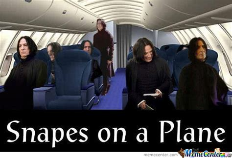 Snakes On A Plane Meme - snakes on a plane memes best collection of funny snakes