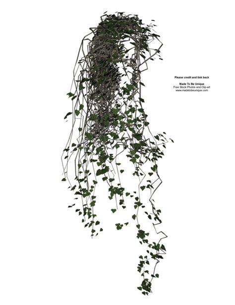sketchup layout transparent background 3d transparent vines plant by madetobeunique on deviantart