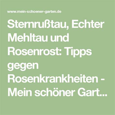 Was Tun Gegen Mehltau 4633 by Sternru 223 Tau Echter Mehltau Und Blattl 228 Use Tipps Gegen