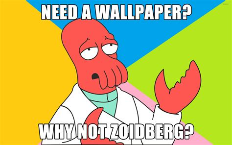 Zoidberg Meme - why not zoidberg wallpaper meme wallpapers 9046