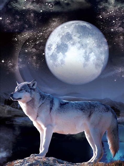 Wolf And Moon wolf moon picture nu venture llc
