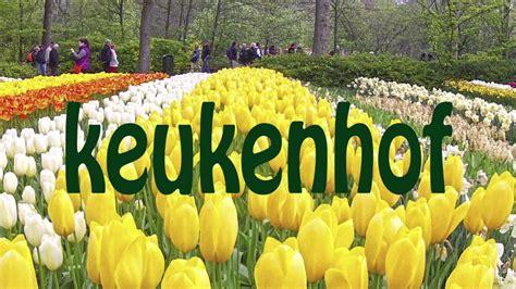 il giardino d europa keukenhof 232 il giardino d europa 232 uno dei maggiori