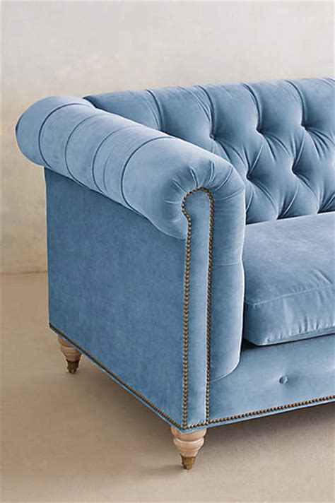 blue velvet couch anthropologie pantone serenity concepts and colorways