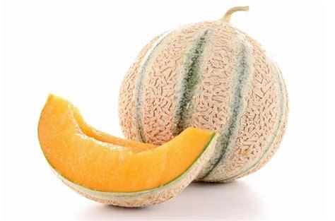 le melon 171 cuisine de b 233 b 233