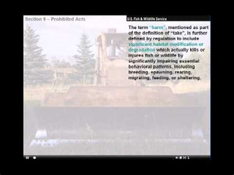 endangered species act section 9 the endangered species act of 1973 section 9 youtube