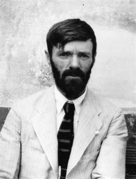 d h lawrence and in search of d h lawrence manuscripts and special collections