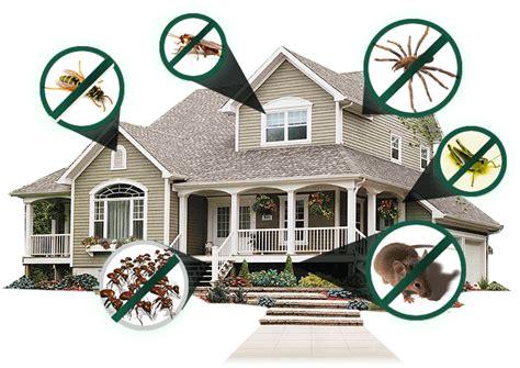 house pest control webb pest control