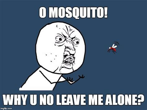 Leave Me Alone Meme - where do mosquitoes go during the daytime 187 science abc