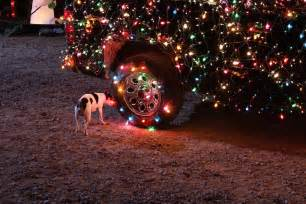 dog car christmas lights wallpapers hd desktop and