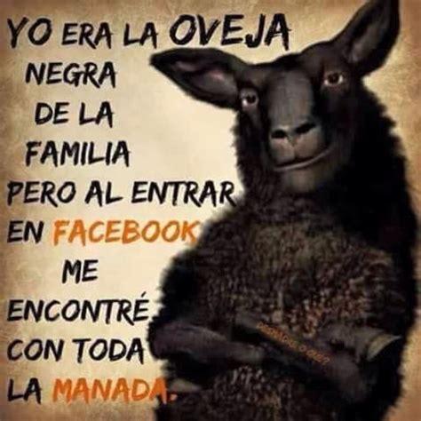 imagenes de ovejas negras 1000 images about soy mexicana en pinterest te amo