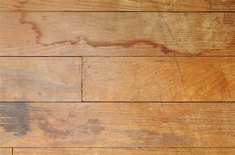 Hardwood Floor Water Damage Hardwood Flooring Denver Water Damage On Hardwood Floors Ed Hoffman Flooring Service