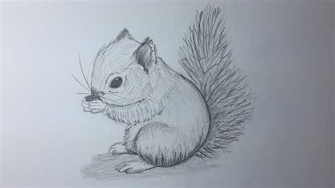 imagenes realistas de animales como dibujar una ardilla paso a paso el dibujante youtube
