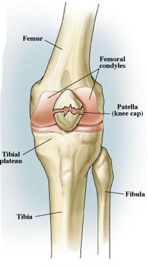 Fractured Patella Weight Bearing