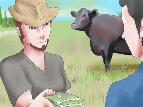 how to raise a how to raise black angus cattle 8 steps with pictures