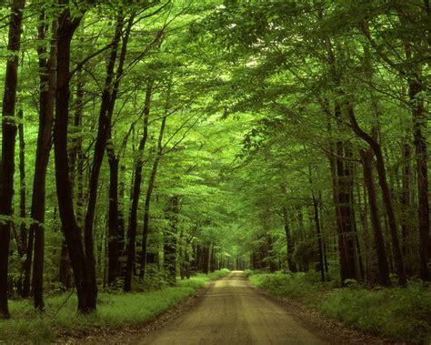 fotos para perfil naturaleza contaminaci 243 n y lugares lindos imagenes im 225 genes taringa