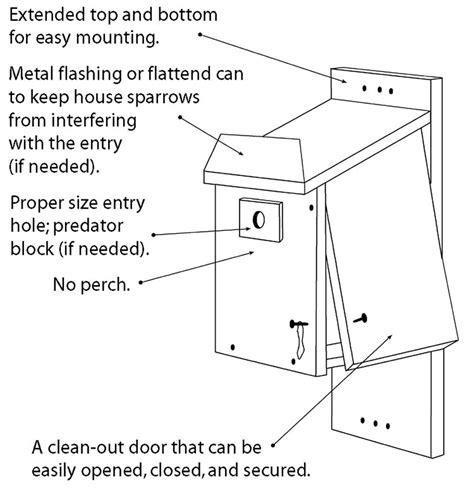 blue bird house hole size training wood project instant get how to build a northern flicker bird house