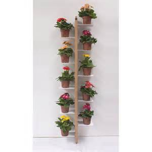 wall mounted plant holder modern design wall mounted plants holder zia flora