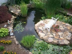 comment un jardin aquatique conseils et photos