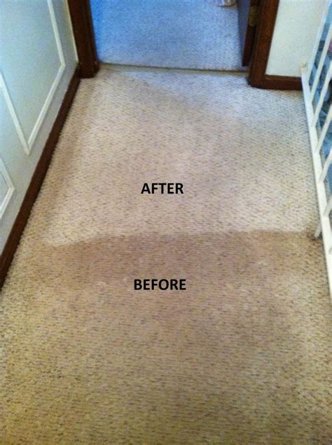 Rug Cleaning Westchester by Sectional Chocolate Sofas Elite Home Ideas