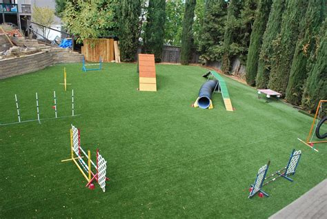 Backyard Obstacle Course For Dogs by Aerialview Jpg 2 048 215 1 374 Pixels Diy Agility Course