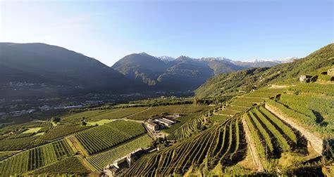 po sondrio la valtellina e la viticoltura di montagna