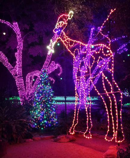 san antonio zoo christmas lights zoo lights wild holiday fun at the san antonio zoo