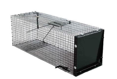 gabbia trappola per gatti strumenti di gestione e cattura trappola per piccoli