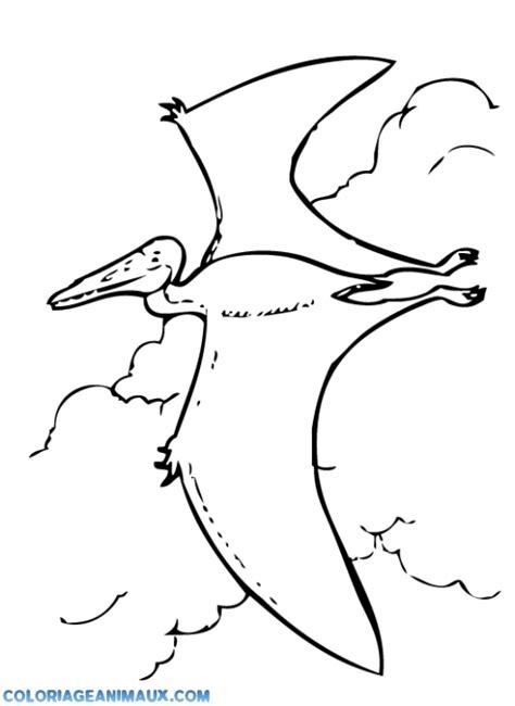 Dessin de coloriage Dinosaure à imprimer   CP09688