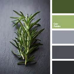 Door Accent Colors For Greenish Gray 25 best ideas about color palette green on pinterest