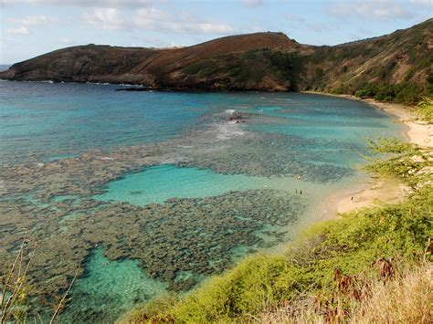 banana boat sunscreen coral reef hawaii approves bill banning sunscreen believed to kill
