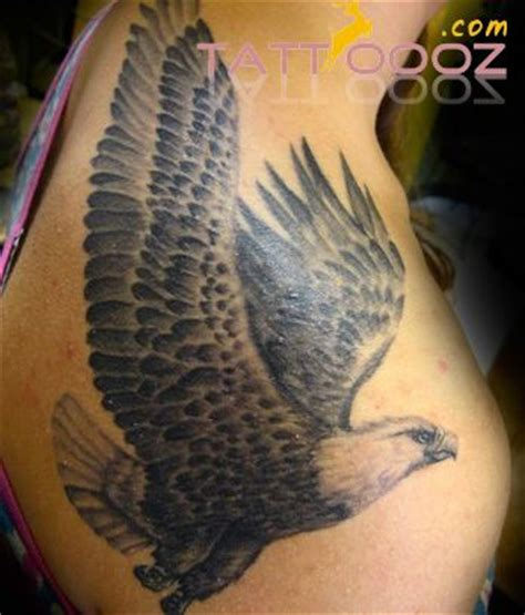 eagle tattoo and piercing studio pinterest the world s catalog of ideas