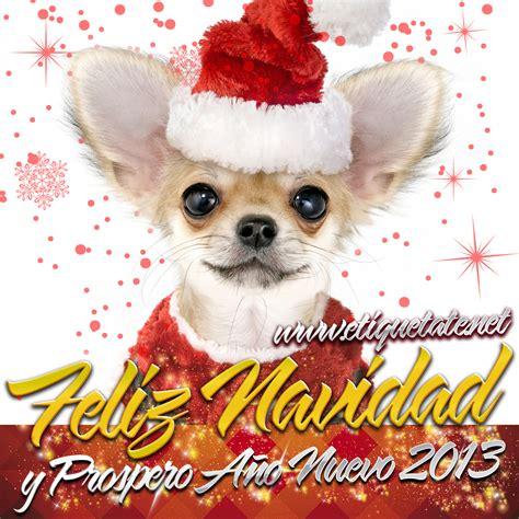 imagenes navideñas para compartir en facebook frases e im 225 genes navide 241 as de cachorritos para compartir