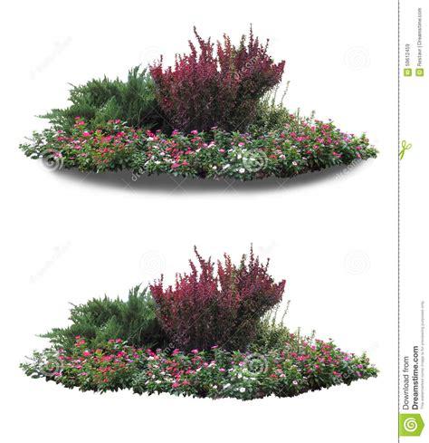 flower garden landscape flower garden stock image image of design