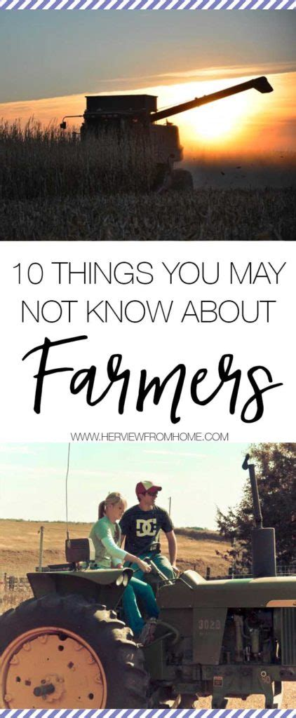10 Things You May Have Not Known About Minecraft Youtube - 10 things you may not know about farmers her view from home