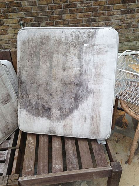 how to clean your couch cushions hometalk how to clean and renew outdoor furniture and