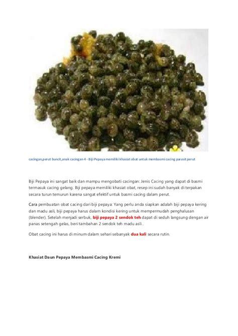 Obat Cacing Perut penyebab cacingan dan cara mengobati parasit cacing perut